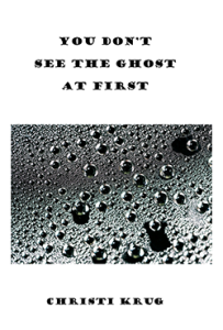 xtra small Cover image - You Don't See the Ghost at First_Page_1