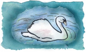 swan-March-12